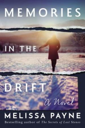 Memories in the Drift PDF Download